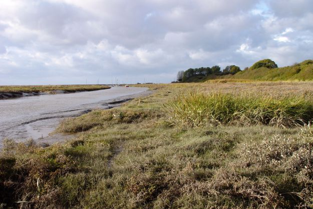 12-11-the-marshlands-21