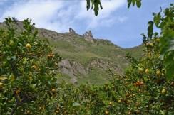 Castle viewed fm ground Francavilla