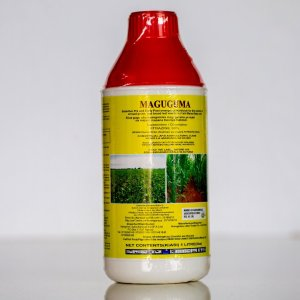Maguguma is a selective herbicide for maize