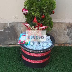 Christmas trees in Kenya