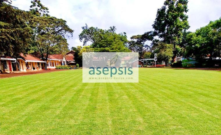 Gallery Asepsis Limited