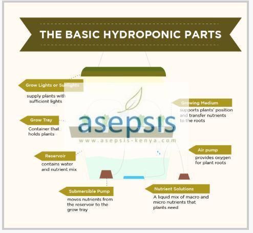 Basic Hydroponic Farming System