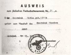 Salvoconducto de trabajador claificado emitido en Antopol por el ejército de ocupación nazi el 15 de marzo de 1942