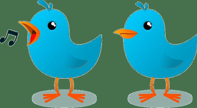 Twitter para despachos profesionales, asesorías y gestorías.