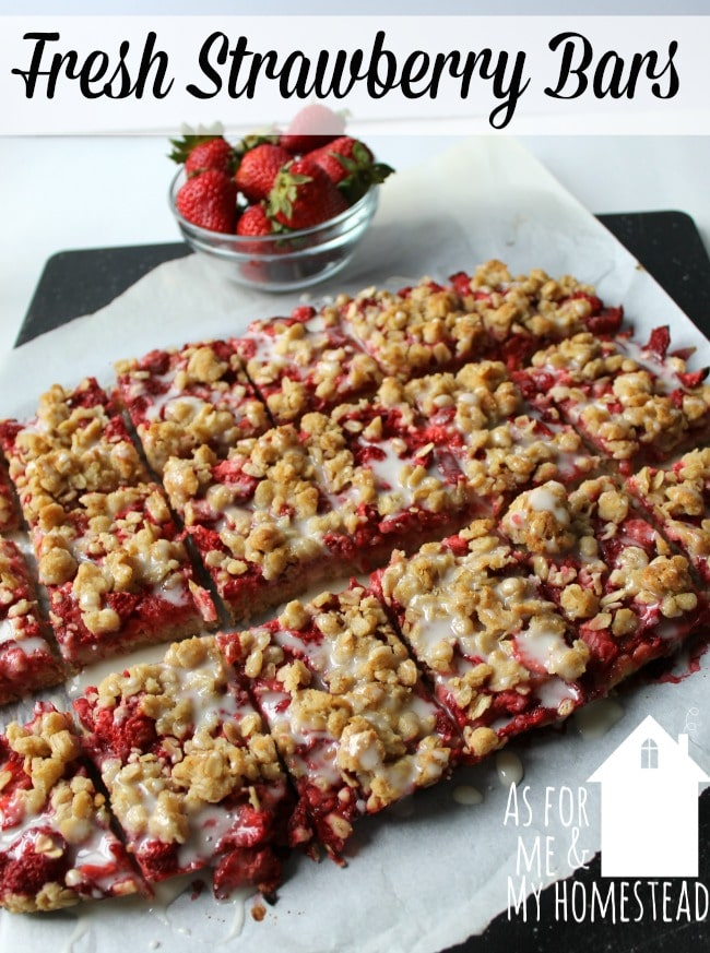 Packed with fruit, Fresh Strawberry Bars are a deliciously sweet recipe to enjoy. A crunchy oat crust combines with the sweet strawberries for perfection!
