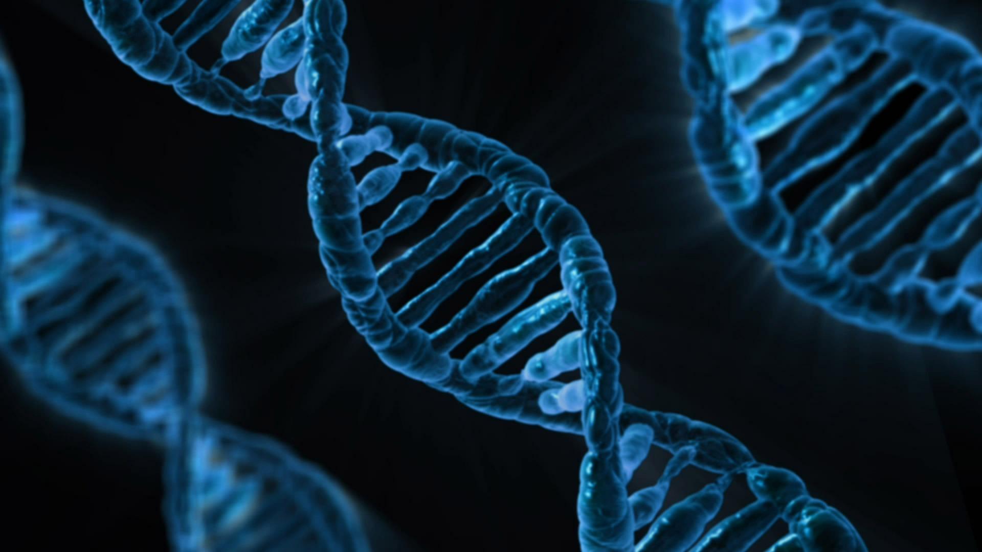 El ADN no miente