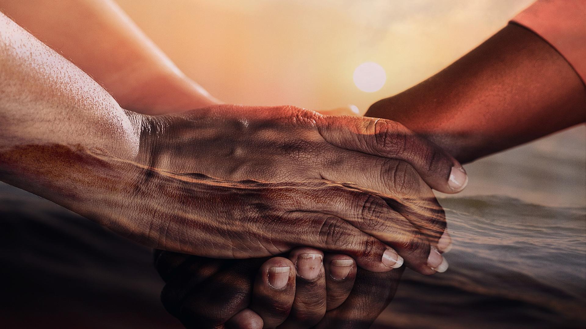 La bondad es el pináculo de...