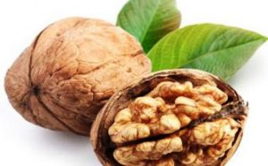 Manfaat dari Kenari untuk Mengurangi Berat Badan, Meraih Rambut Sehat, dan Mendapatkan Kulit yang Mulus