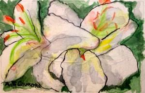mini-maine-in-bloom
