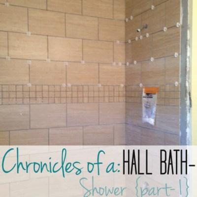 Hall Bath Chronicles- Shower Pt1