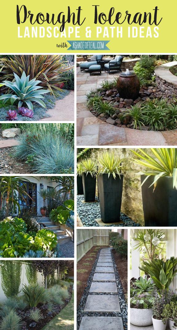 Drought tolerant landscape path ideas - Drought tolerant front yard landscaping ideas ...