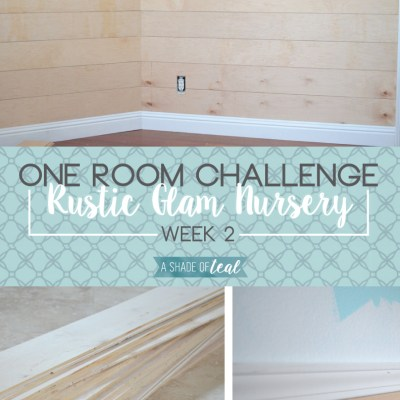 Rustic Glam Nursery {One Room Challenge}, Week-2