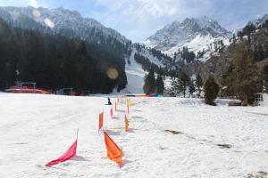 Naltar, Gilgit Baltistan, Pakistan