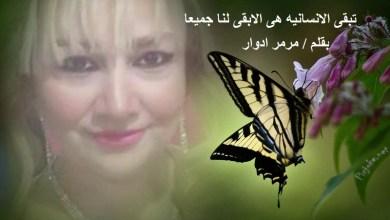 "Photo of ""مرمر ادوار "" ستبقى الانسانيه هى الابقى لنا جميعا"