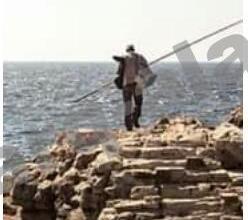 Photo of ارتيريا تحتل جزر يمنية