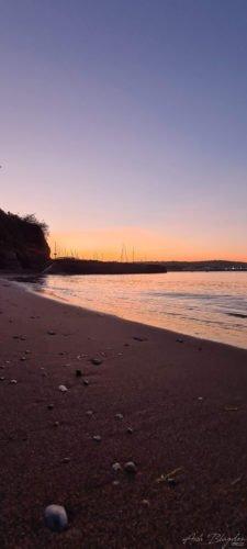 Fairy Cove Paignton 2020 1