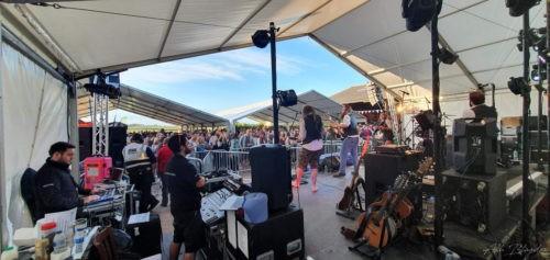 Occombe Festival Paignton Normal