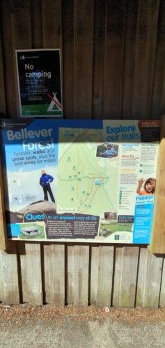 Bellever Forest poster