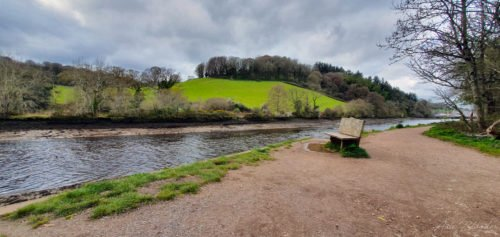 Bench next to a river