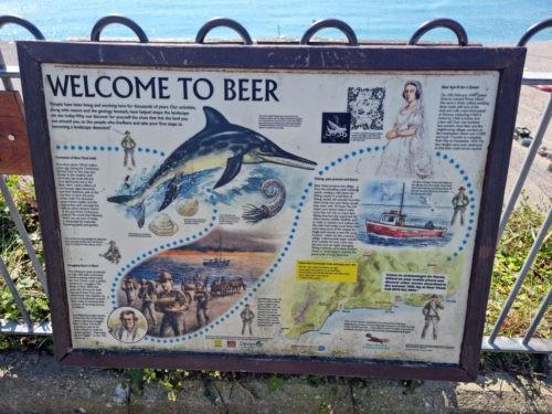 Beer Devon 2021 4