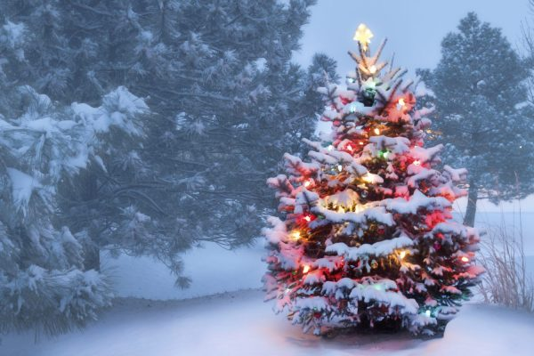 Egg Harbor Holly Days and What You Need to Know