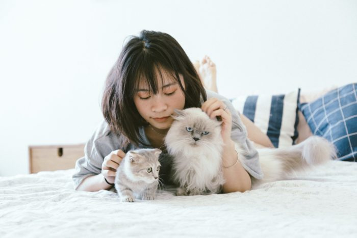 Only the Best for Your Fur Babies: Pet-Friendly Features to Look for When Buying a Home