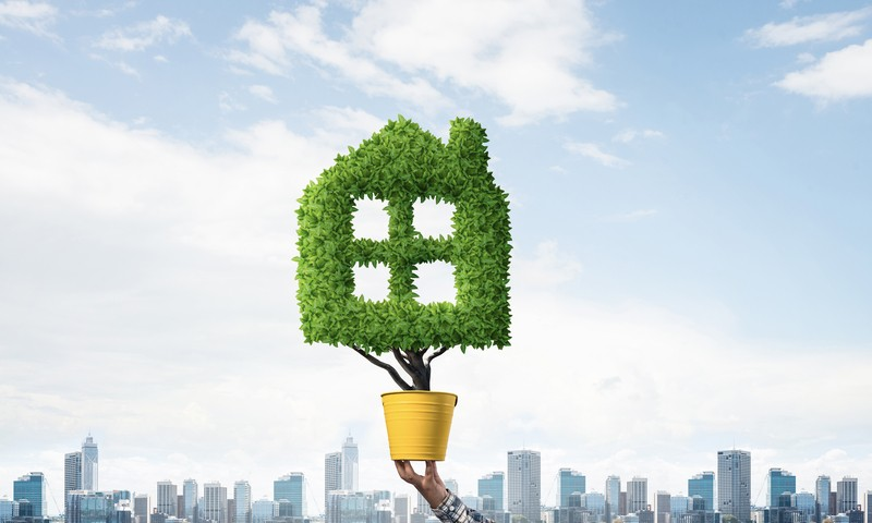 How to Reduce Greenhouse Gas Emissions in Your Home Renovation