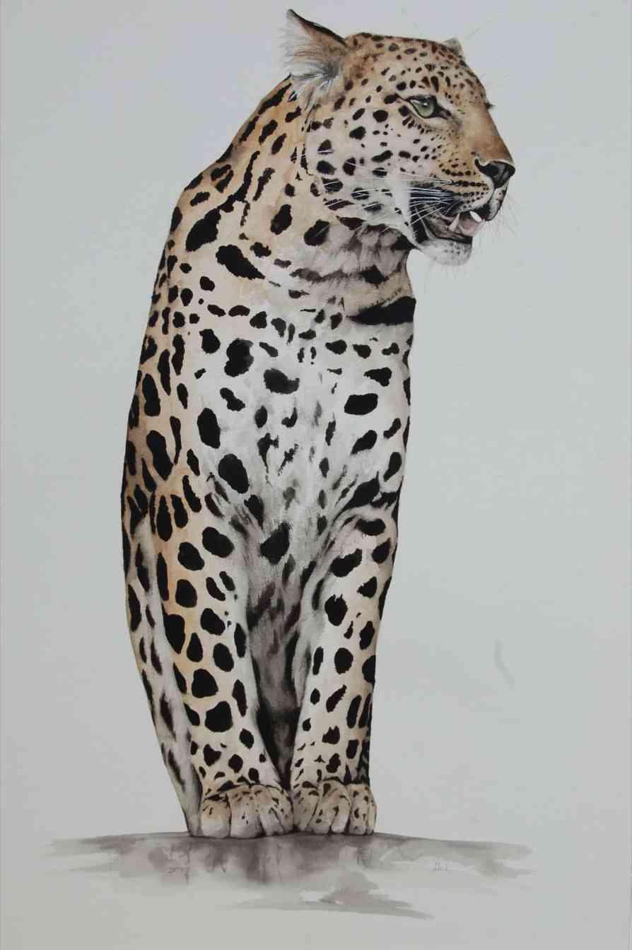 Dominque Salm Leopard - Ashcroft Art