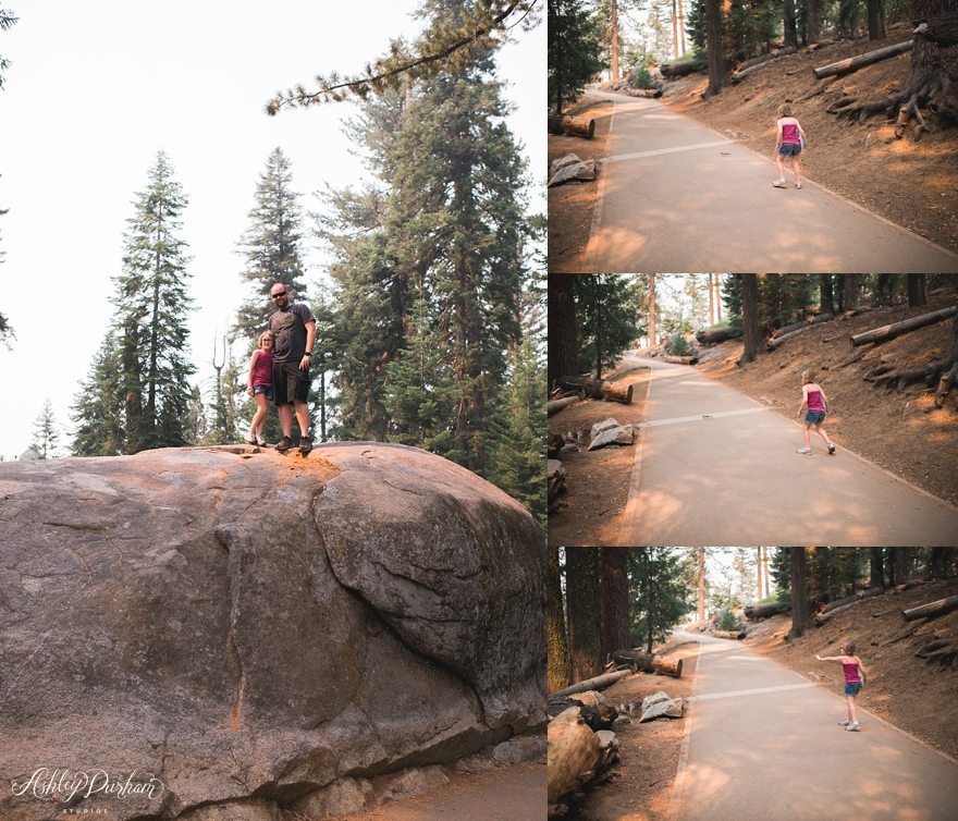 sequoia rv trip summer 2015_0012