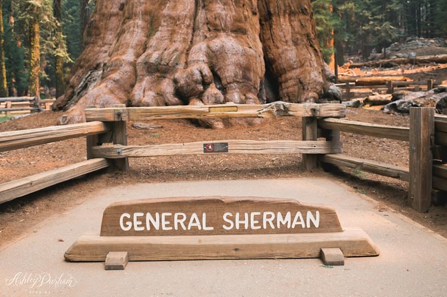 sequoia rv trip summer 2015_0021