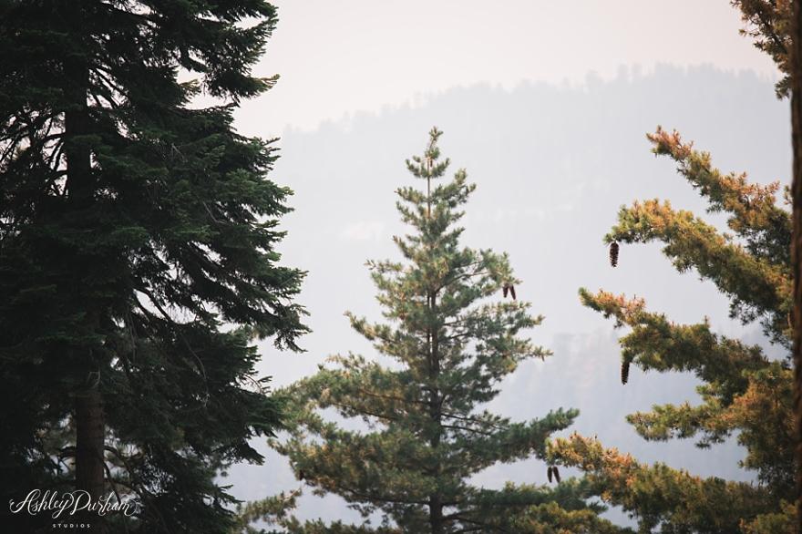 sequoia rv trip summer 2015_0027