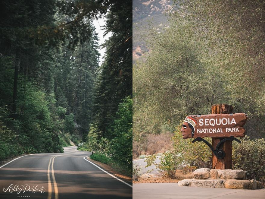 sequoia rv trip summer 2015_0028