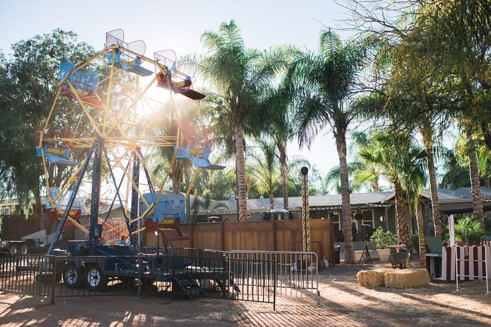 backyard vintage carnival wedding, backyard wedding, ferris wheel at a wedding, circus wedding