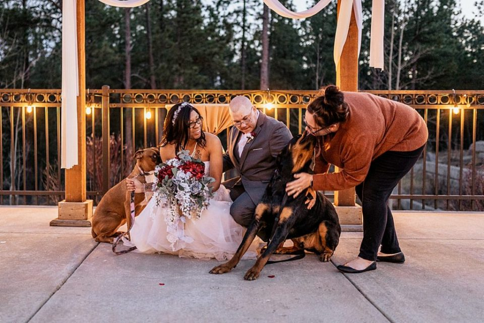 ashley durham with a rottweiler and wedding couple
