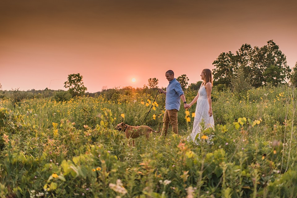 couple walking with dog in a field of flowers