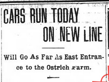Ostrich [sic] farm in Asheville, 1902. Asheville Daily Gazette, November 15, 1902.