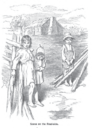 Christian Reid, The Land of the Sky, p. 20. HathiTrust.