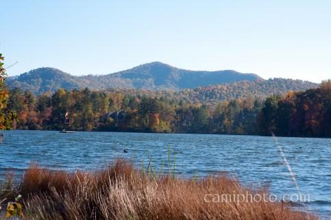 Biltmore Lake Fall colors