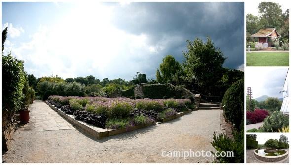camiphoto_nc_arboretum_wedding_0004