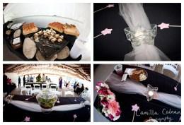 camiphoto_lake_lure_gazebo_wedding_0023