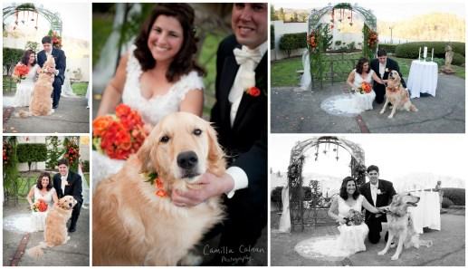 camiphoto_lake_lure_inn_wedding_0019