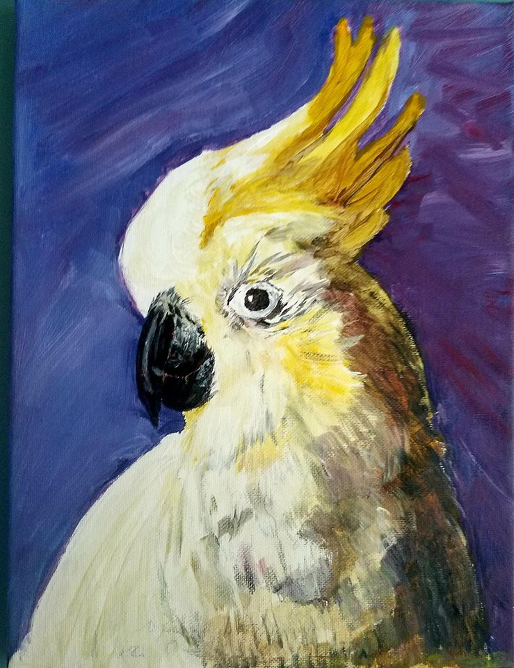 sharon punty yellow parrot