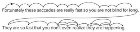 How eyes jump forward and backward while reading