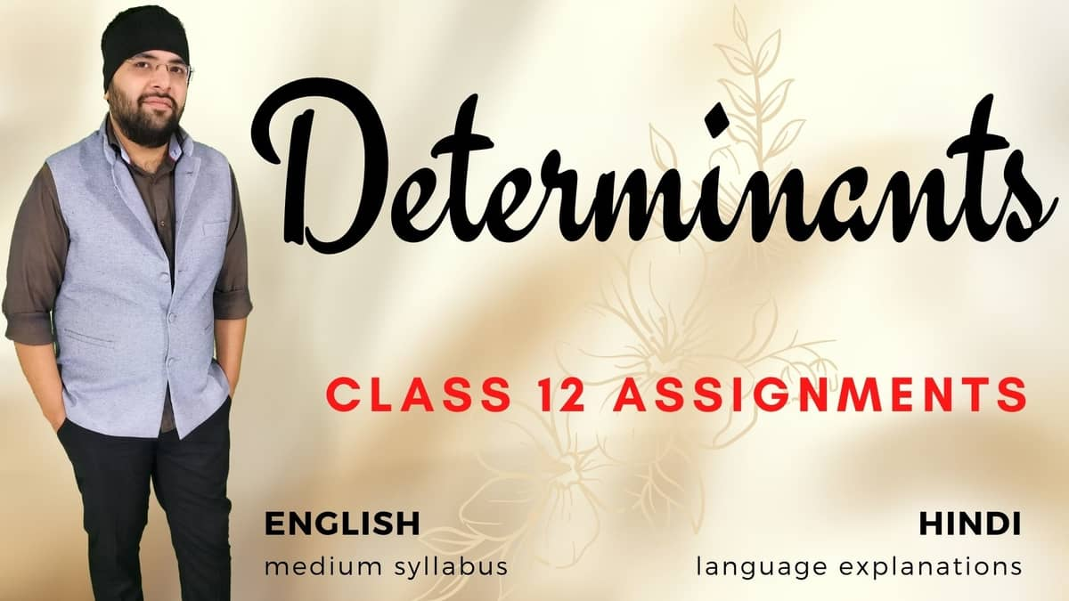 Determinants Class 12 Assignments