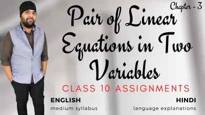 Pair of linear euqations in two variables class 10 assignments 1200px