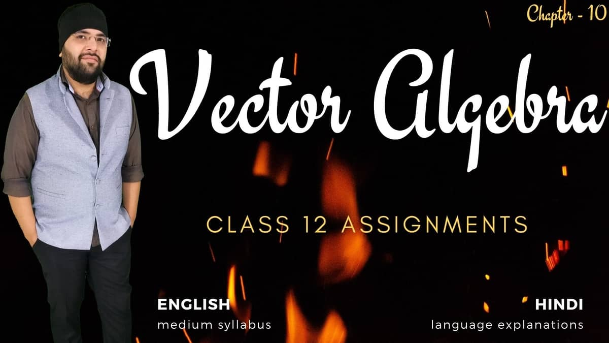 Vector Algebra Class 12 Assignments