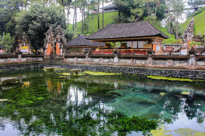 Should I Do a Yoga Retreat in Bali or India?