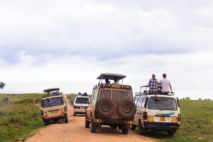 Uganda safari: Going on safari in Murchison Falls National Park