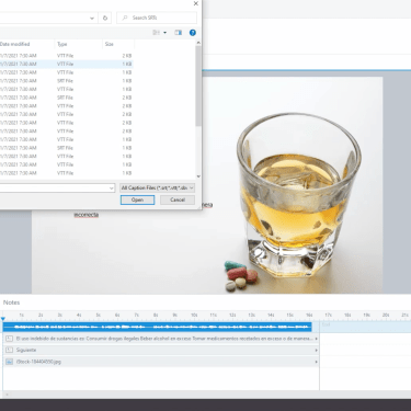 Tips and Tricks for Working with Translations in Articulate Storyline