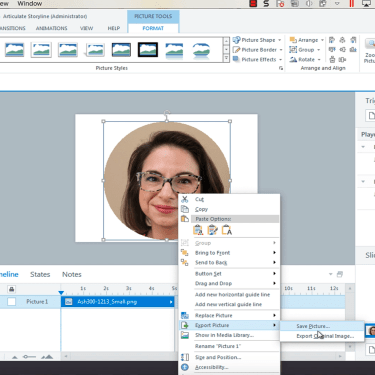 Export Picture in Articulate Storyline